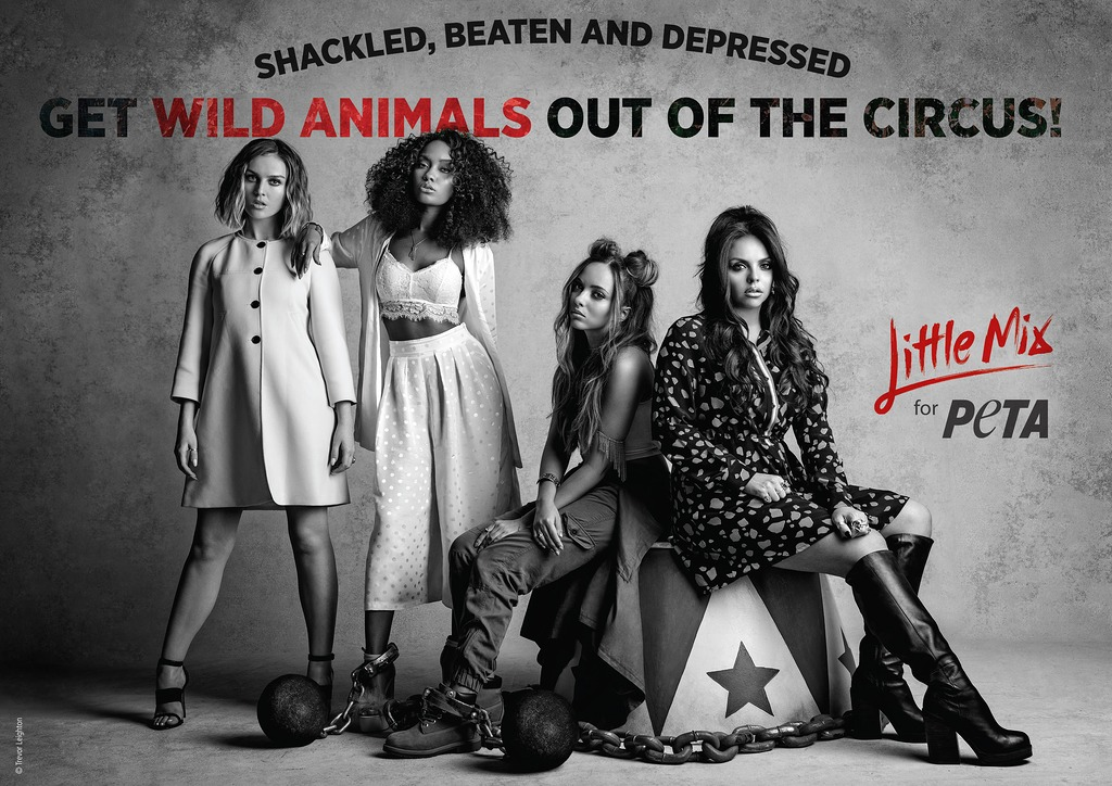 Little Mix for PETA